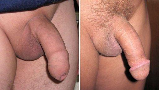 Schwanzmassage